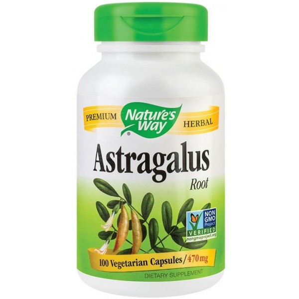 Astragalus Root 100Cps Nature's Way Secom