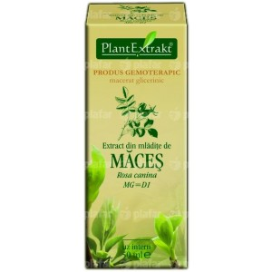 Rosa Canina (Maces) 50Ml Plantmed