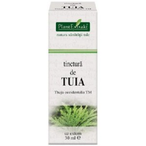 Tinctura De Tuia(Thuja Occidentalis) 30Ml Plantmed