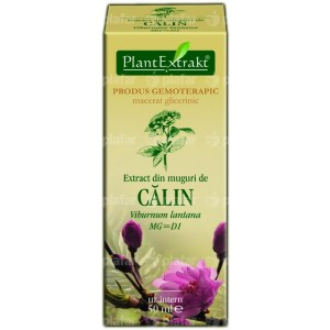 Viburnum Lantana (Calin) 50Ml Plantmed